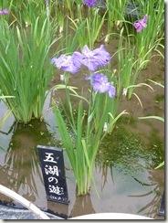 「五湖の遊(江戸系)」