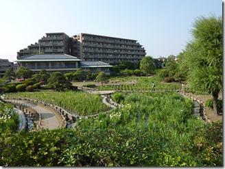 2013/5/23(木)堀切菖蒲園の開花状況