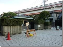 6/24(木) 菖蒲祭りの終った菖蒲園